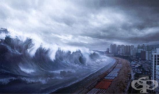 Най-страшните бедствия, които промениха света (2 част) - изображение