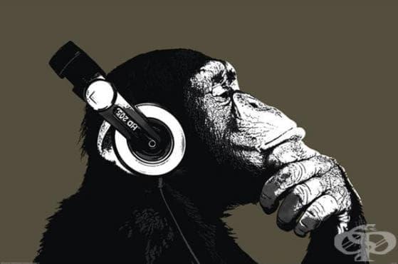 Защо харесваме музика? (инфографика) - изображение