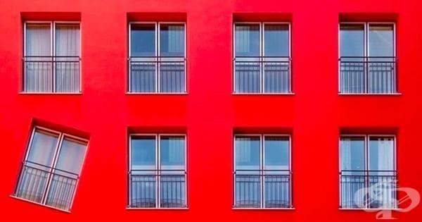 20 снимки, които със сигурност ще подразнят вашият вътрешен перфекционист - изображение