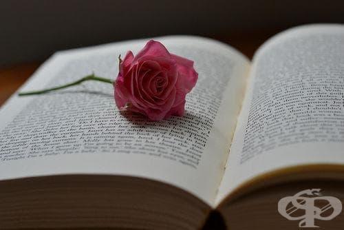 13 литературни откъса, които ще променят живота ви - изображение
