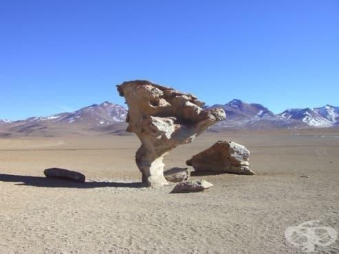 Притча за тримата каменоделци - изображение