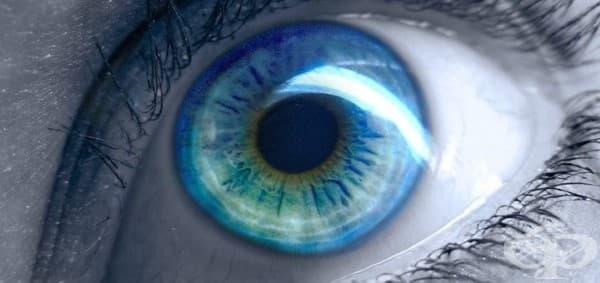 Първият човек със сини очи произхожда от района на Черно море - изображение