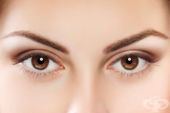 Учените твърдят, че цветът на очите ви издава тайни за вашата личност – II част - изображение