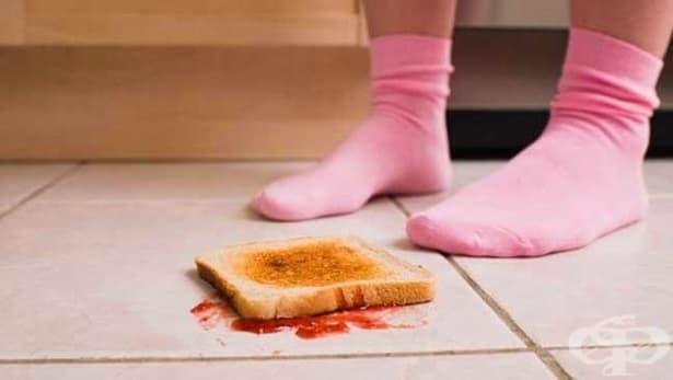 Финалният отговор: Можем ли да ядем храна, след като сме я изпуснали? - изображение
