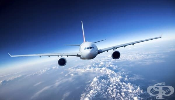 8 странни неща, които можете да качите на борда на самолет - изображение