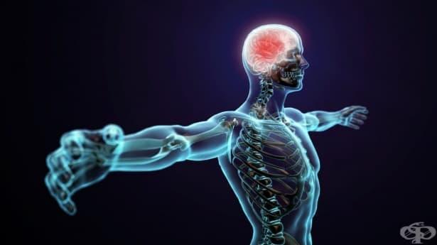 10 рядко срещани аномалии в човешкото тяло – част 1 - изображение