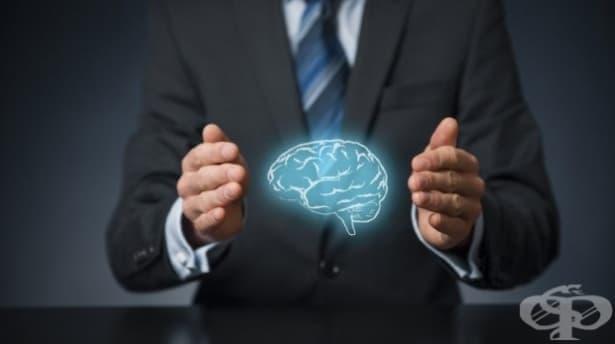 15 факти за мозъка, които доказват, че хората са способни на всичко - изображение