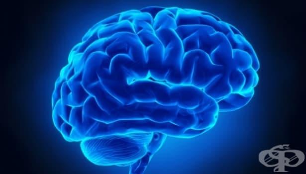 14 удивителни примера за това как влияем на мозъка си – 1 част - изображение