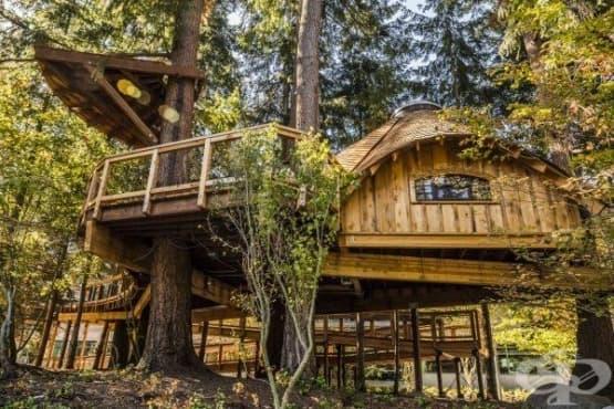 Microsoft построи къщи от дърво, за да насърчи креативността на своите служители - изображение