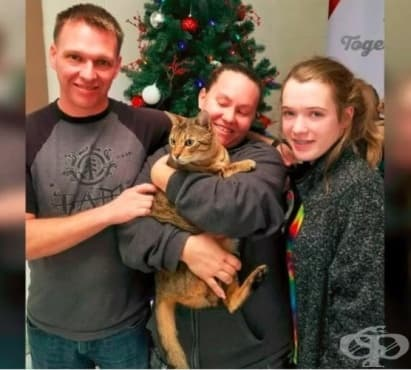 Семейство откри изчезналата си котка след 3 години търсене - изображение