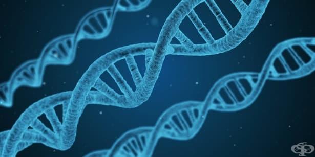 Странни теории как хората ще еволюират - част 1 - изображение