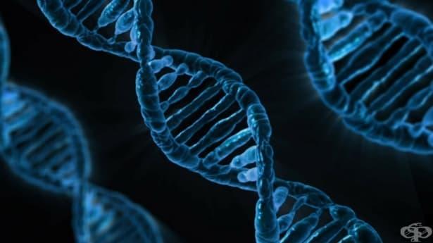 Странни теории как хората ще еволюират – част 2 - изображение