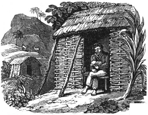 Невероятният живот на Александър Селкърк, истинският Робинзон Крузо  - изображение