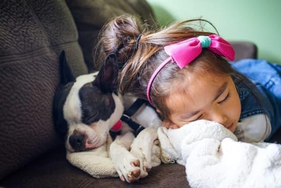 Присъствието на домашния любимец в леглото през нощта подобрява качеството на съня - изображение