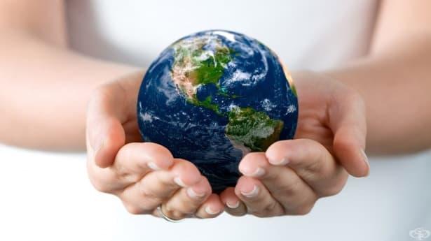 18 удивителни факта, които ще преобърнат представата ви за света - част 1 - изображение
