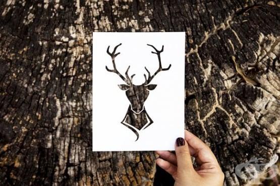 Петер Калесен и неговите магически творби от хартия - изображение