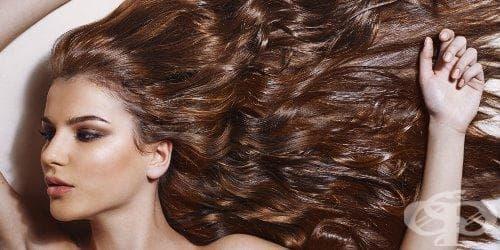 Какво издават вида на косата и прическата за характера на човека (първа част) - изображение