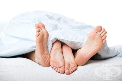 Вижте 14 факта за секса, които няма да повярвате, че са истина - изображение