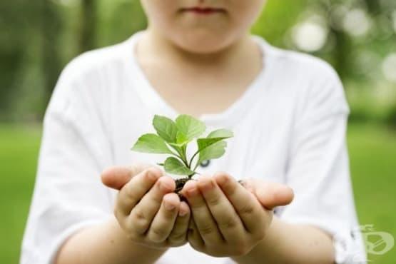 5 причини да проявявате доброта - изображение
