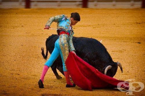 Коридата – зловещата традиция на Испания - изображение