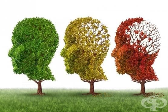 Как да общуваме с хора, които страдат от Алцхаймер и други форми на деменция - изображение