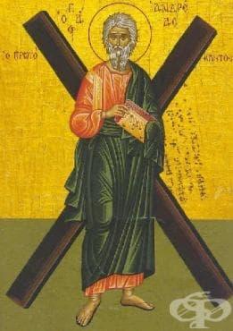 Андреевден - традиции и обичаи - изображение