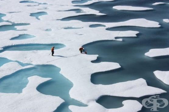Защо трябва да ни пука за топенето на ледовете в Арктика - изображение