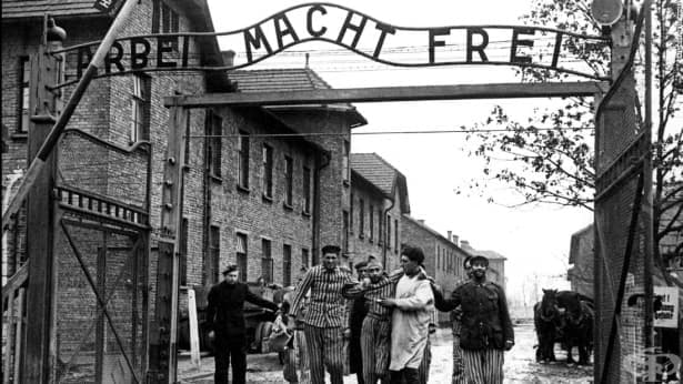 """Резултат с изображение за """"концентрационен лагер Аушвиц"""""""