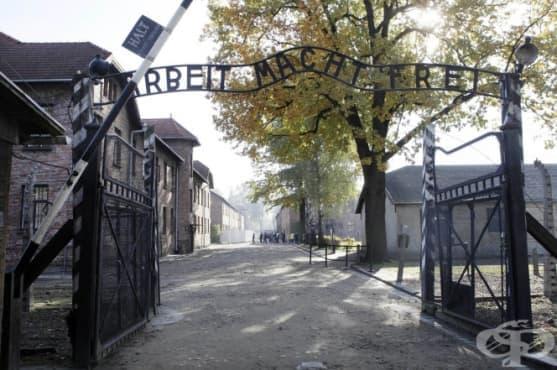 Внучка на оцелял от Холокоста призна,че е обрала Аушвиц - изображение