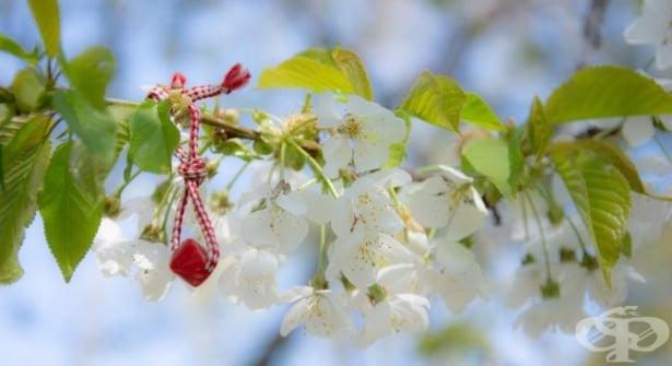 Традиции и обичаи на 1 март - Баба Марта - изображение