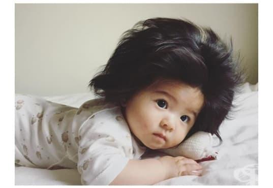 Бебе с много коса се превръща в Инстаграм сензация - изображение