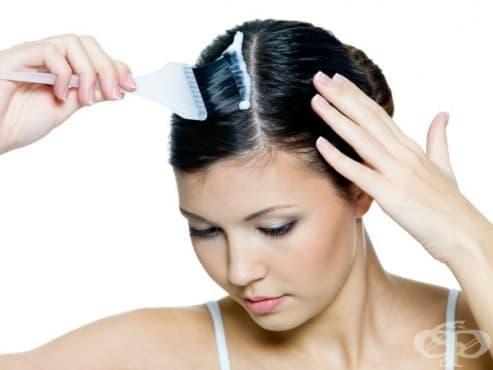 Боя за коса от касис  - безвредната алтернатива на учените - изображение