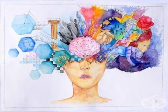 Как мозъкът шифрова езика - мистерията е разбулена - изображение