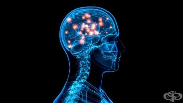 5 начина да измамите мозъка и тялото си и да бъдете щастливи - изображение