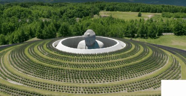 Спираща дъха гледка: Буда, заобиколен от 150 000 растения лавандула - изображение