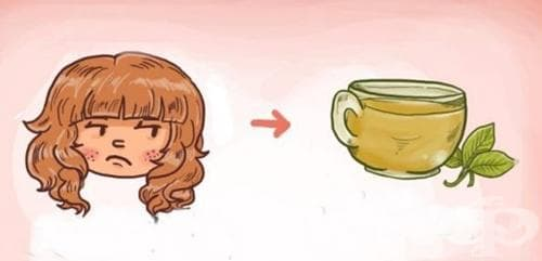 Вижте нагледно - коя билка да изберете за вашия чай, според нуждата и вашия проблем (инфографика) - изображение