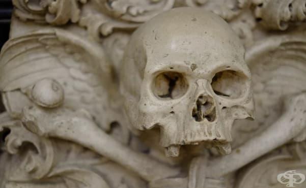 Костите на 30,000 жертви на чумата декорират стените на църквата в Седлец - изображение