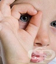 Вижте какви са процентните вероятности за определяне цвета на очите на едно дете, според този на родителите (инфографика) - изображение