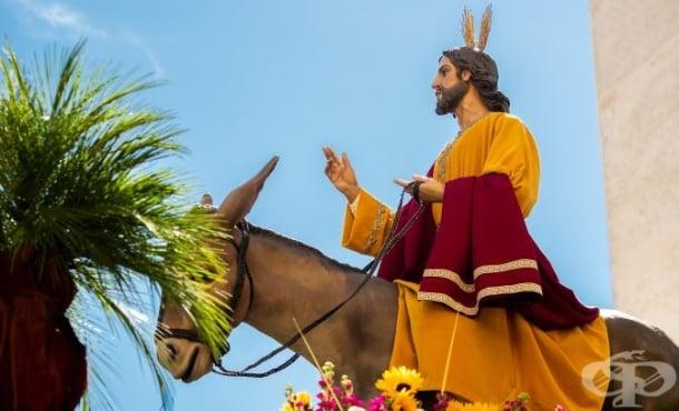 Цветница - традиции и обичаи - изображение