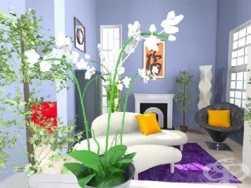 Как да използвате цветята като фън шуй символ във вашия дом? - изображение