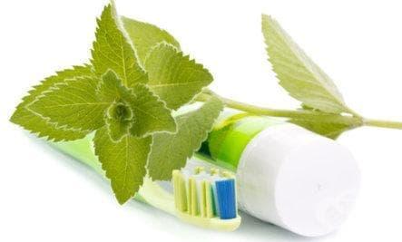 Домашно приготвена паста за зъби с мента и смирна - изображение