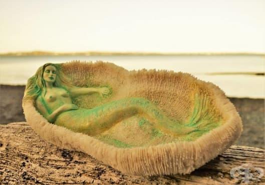Хипнотизиращите дървени скулптури от плавей - изображение
