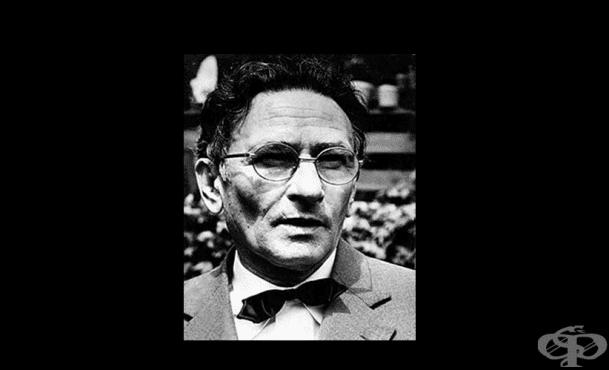 38 години от смъртта на Емилиян Станев - изображение