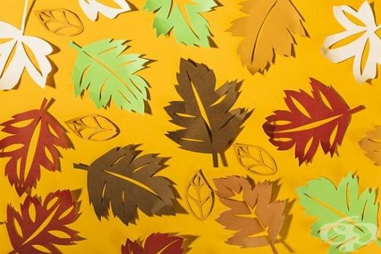 Украсете дома си с ръчно направени есенни листа от оризова хартия - изображение