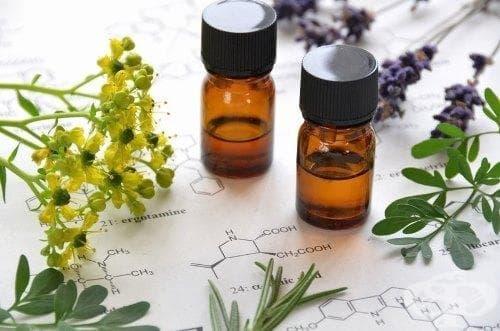 13 вида етерични масла за лъскава коса и третиране на главови въшки - изображение