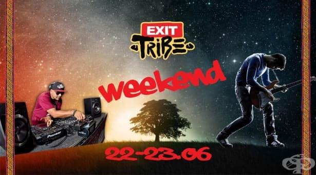 Телевизия ММ с първи тематичен уикенд след завръщането си – фестивалът EXIT 2019 - изображение