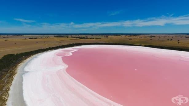 С цвят на дъвка: езерото Хилиър в Австралия - изображение
