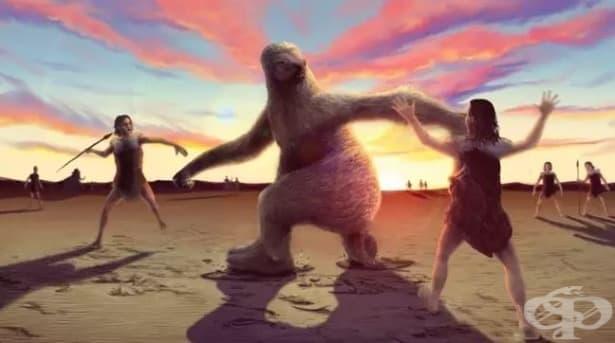 Най-смелите ни предшественици са ловували гигантски ленивци - изображение