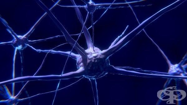 Гимнастика за мозъка — забавен тест + отговори - изображение