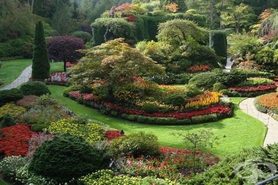 Как да създадете фъншуй  в градината - изображение